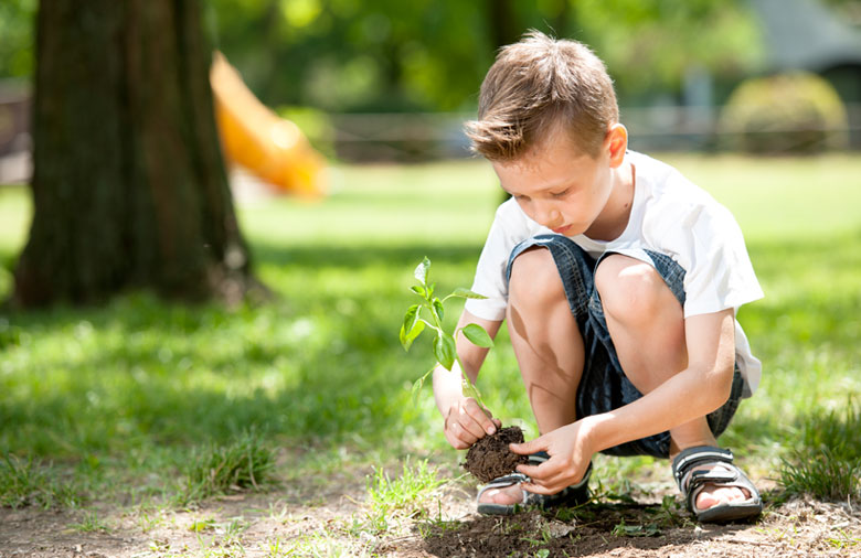 little-boy-planting-a-tree
