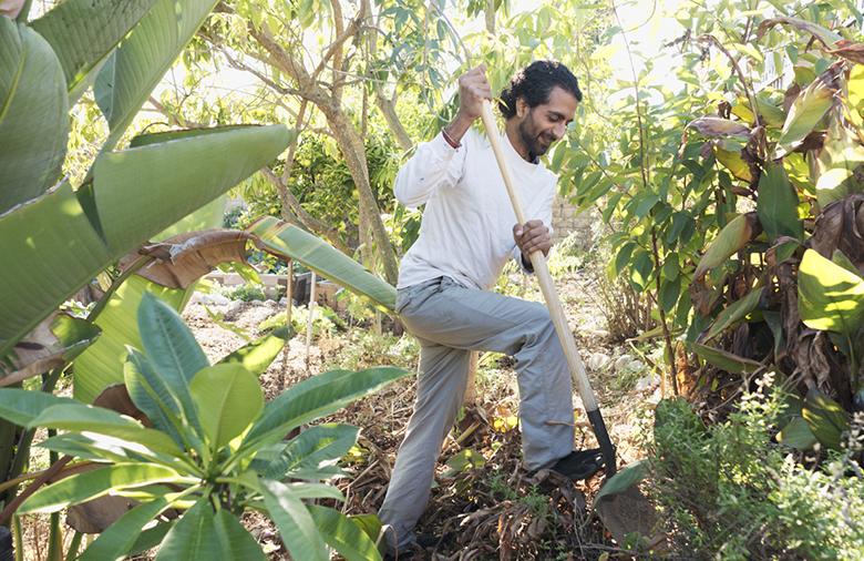Rishi-kumar-urban-farming