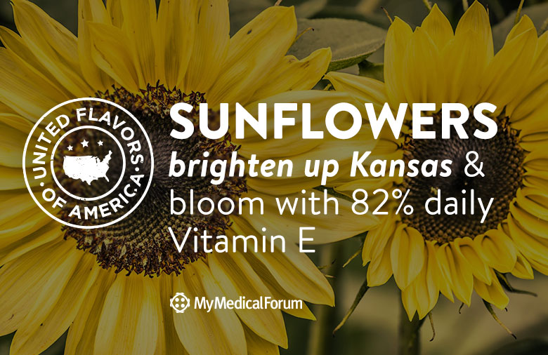 united-flavors-of-america-kansas-sunflowers-my-medical-forum
